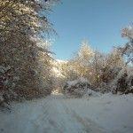 Paseo al bosque del Betato - Hotel en Pirineos