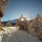 Paseo al bosque del Betato - Pirineos