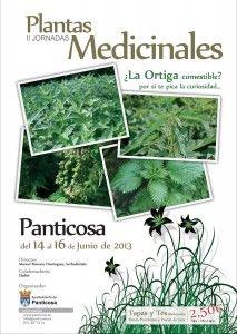 II Jornadas de Hierbas Medicinales en Panticosa