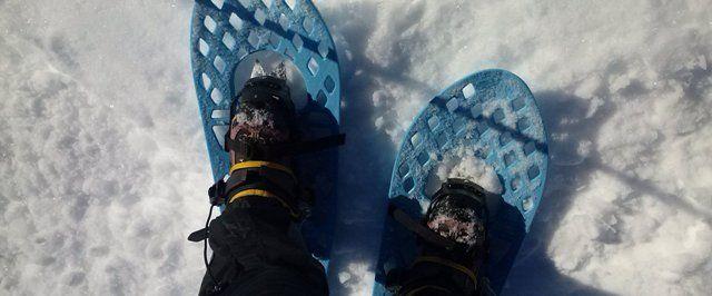 Excursiones con raquetas de nieve.