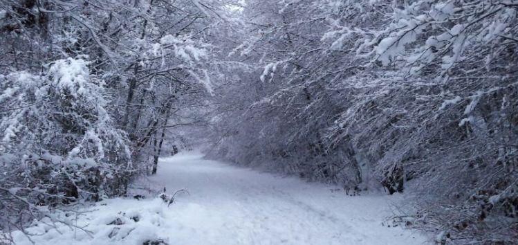Actividades en la nieve en el Pirineo aragonés